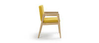 Prose Side Chair - Clear over Ash